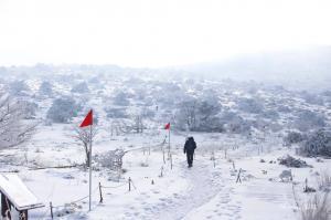 [제주날씨] 19일 중산간 빙판길 '주의'