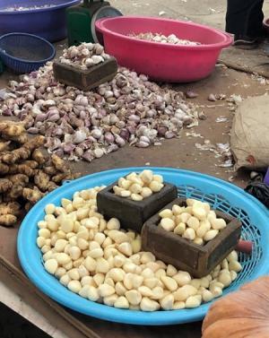 일해백리(一害百利), 세계 10대 슈퍼푸드 '마늘'