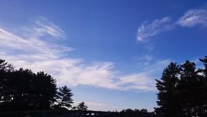 [제주날씨] 대체로 맑음...중산간 이상 일교차 커